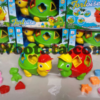 Jual Mainan Kura Kura Tortoise Murah